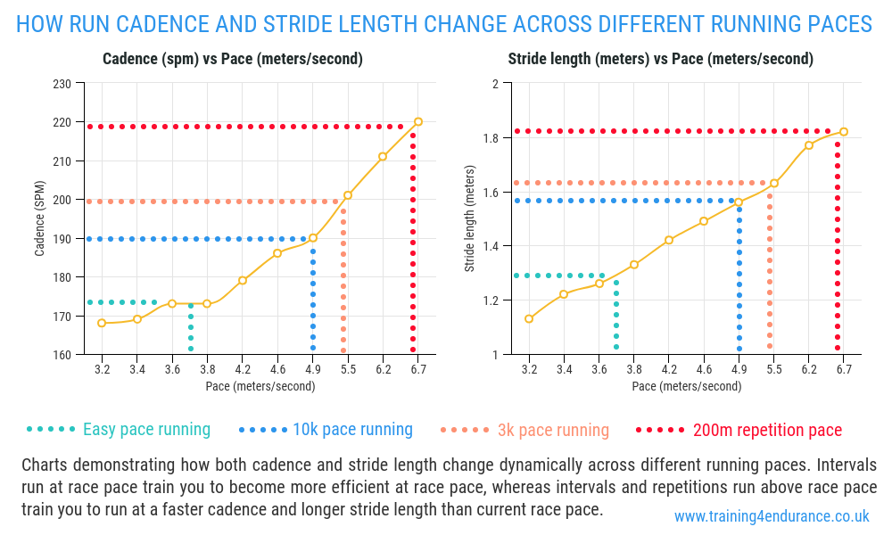 Running cadence and stride length chat