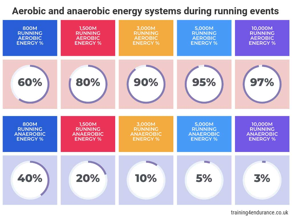 Aerobic and anaerobic energy systems in endurance running events