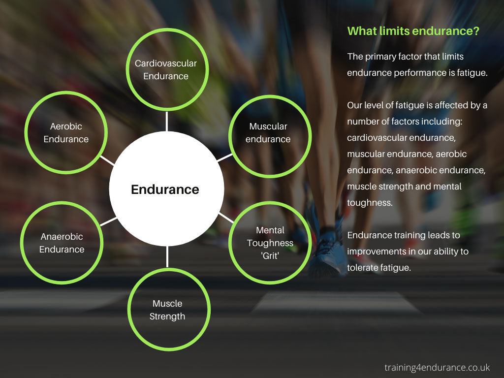 What limits endurance exercise