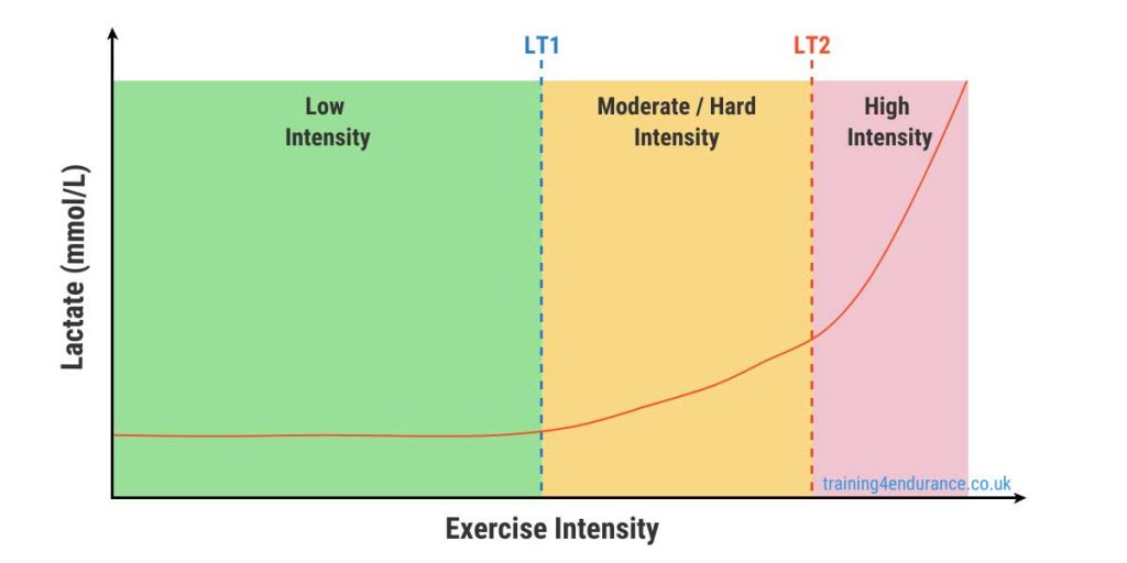Lactate Threshold Training Zones